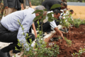 Ethiopia Planted More Than 200 Million Trees in One Day - World Record