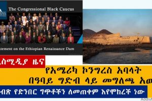 Ethiopian News: የዕለቱ ዜናዎች AddisMedia Daily News 06/24/20