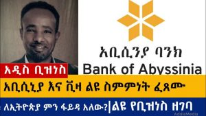 Bank of Abyssinia and VISA to Start Accepting Online Payments in Ethiopia
