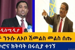 Ethiopia: የዕለቱ ዜናዎች Daily Ethiopian News -AddisMedia 08/11/20
