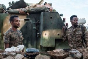 Comment on Ethiopian forces vow to crush 'the terrorist group' in a new offensive by Ittu Aba Farda