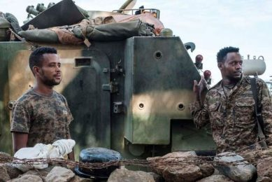 Comment on Ethiopian forces vow to crush 'the terrorist group' in a new offensive by Newera