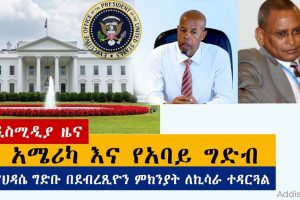 Ethiopian News: የዕለቱ ዜናዎች AddisMedia Daily News 06/18/20