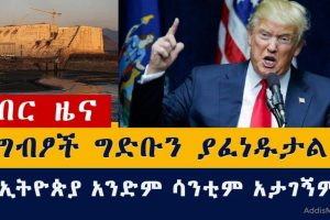 Egypt will blow up the Nile Dam – Donald Trump