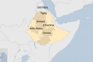 Comment on Attackers kill at least 20 in attack in Ethiopia's Oromiya region, says official by Agazian